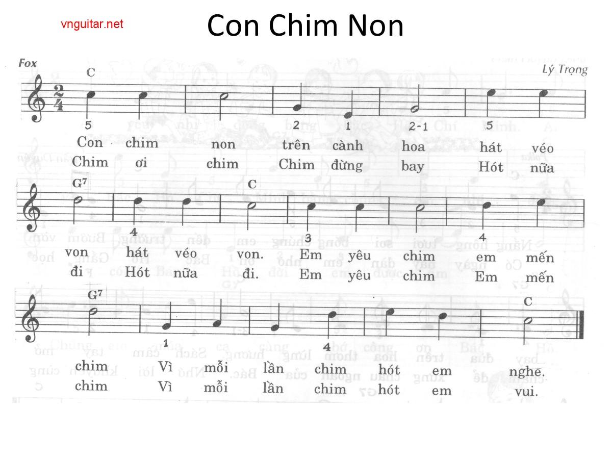 conchimnon.jpg