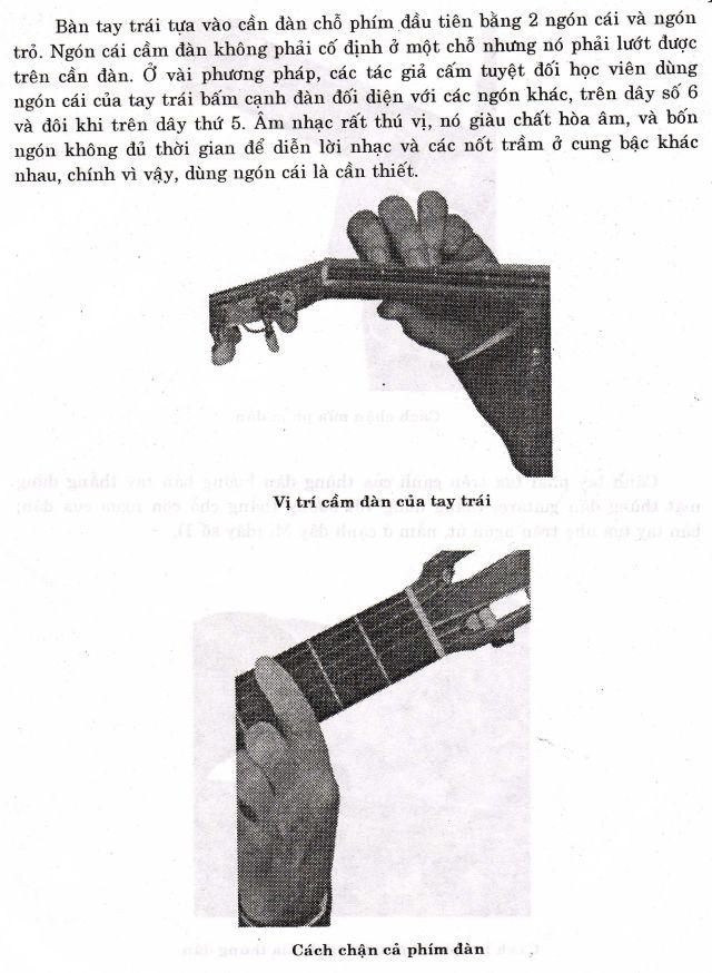 guitar-3.jpg