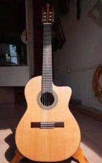 Guitar made by Hoang Dalat 2.jpg